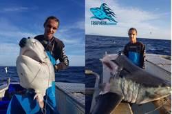 捕到巨鯊只剩頭嚇壞 剖開驚見旗魚尖喙插體內