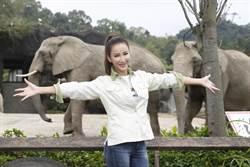 李玟現身動物園清象便 不憂孕事「歌迷都是寶貝」