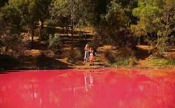 超夢幻粉紅湖成打卡新熱點!專家警告:別靠近