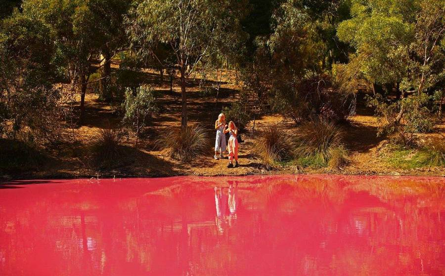 超夢幻粉紅湖成打卡新熱點!專家警告:別靠近(圖/翻攝自推特/@TRH_WandC)