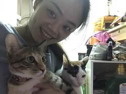 家中養兩流浪貓 美聲女孩愛唱歌又有愛心