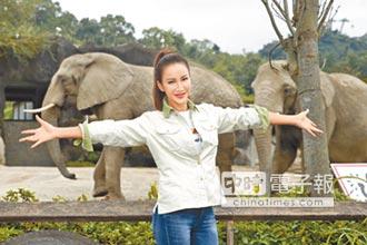 李玟為象取名滿腦台灣美食