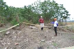 百年墓地疑遭破壞 工程人員:除草未發現墓地