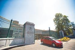 關稅戰害的 WTO下修全球貿易增速
