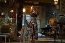 荷莉貝瑞自薦加入 《捍衛任務3》搶先全球在台上映