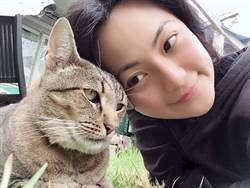 命中注定我愛你!「小喵」再次愛上貓