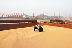 陸增購大豆 美仍提法案防陸威脅