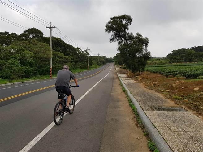 湖新路茶園遍布,是單車族朝聖地,公所計畫活化周邊26公頃土地作為綠色廊帶。(徐養齡攝)
