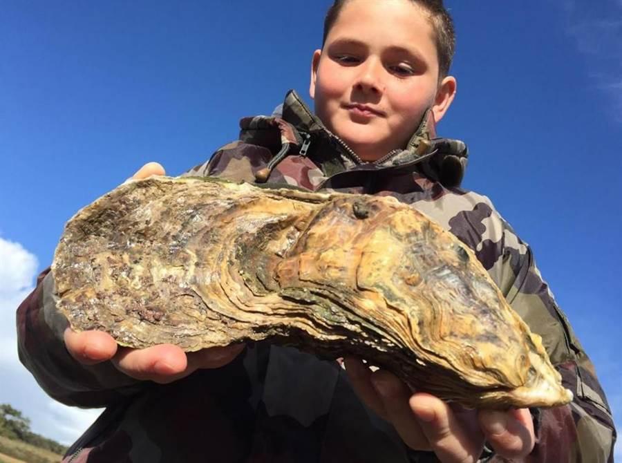 10歲男童河口撿到已活逾30年的臉盆大「巨無霸牡蠣」。(圖翻攝自/leparisien.fr)