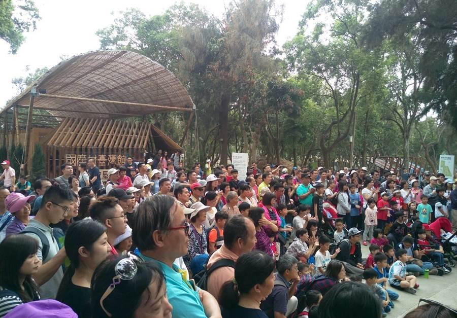 兒童清明節連假期間,遊客湧入台中花博森林園區,但距離入園800萬人次大關,還有一大段距離。(王文吉攝)
