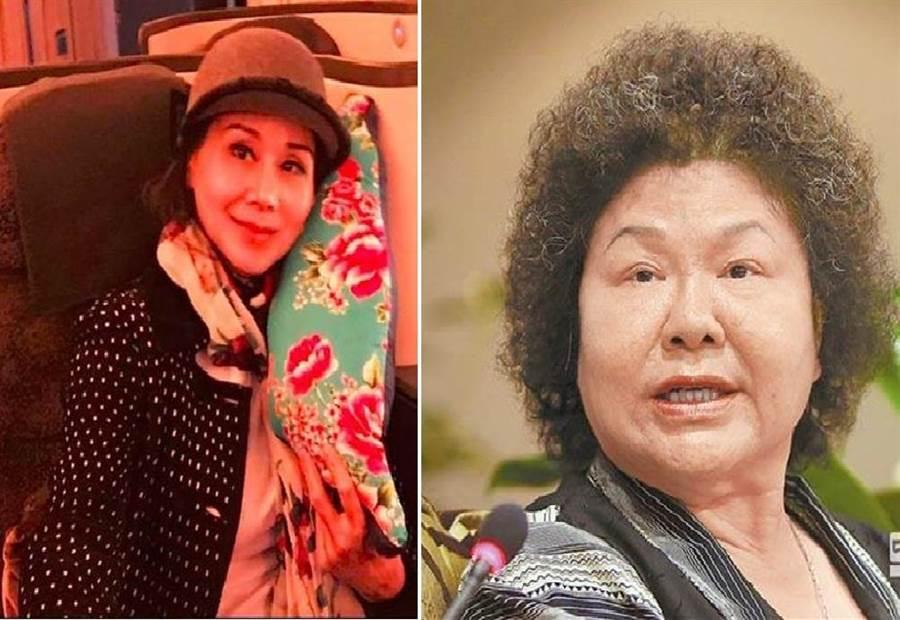 女星張琍敏(左)、總統府祕書長陳菊(右)。(圖/合成圖,本報資料照)