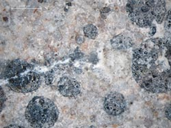 羅威科技引進自我修復混凝土