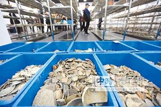 黃泗浦遺址 列十大考古新發現
