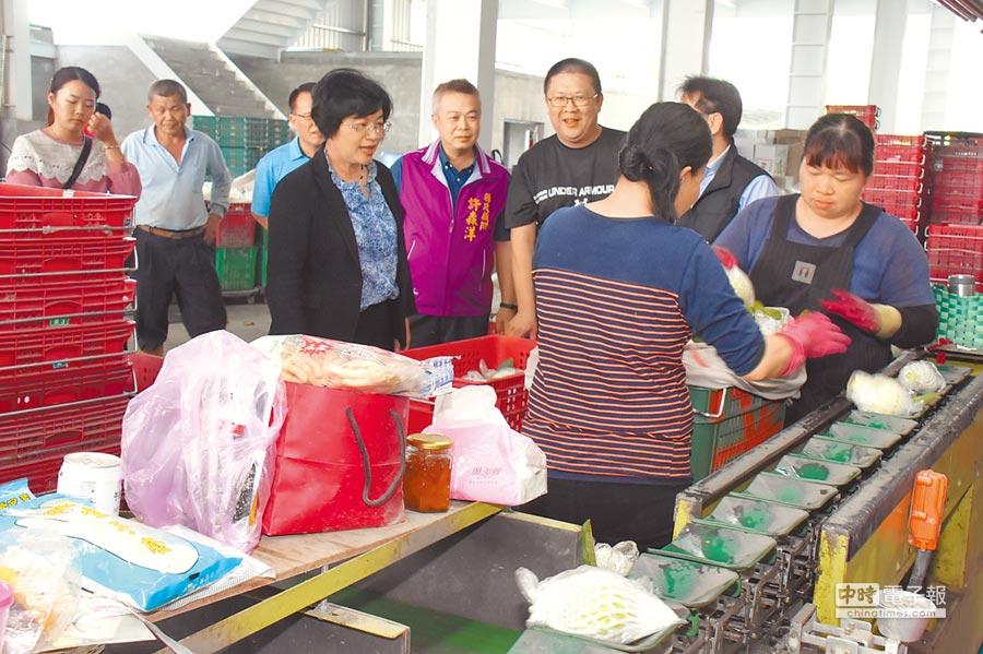 王惠美視察二林家豐果菜生產合作社芭樂收購與芭樂外銷加拿大的情形。(鐘武達攝)