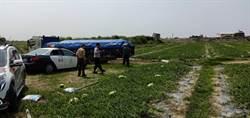 蘆筍西瓜值產季 學甲警啟護農專案