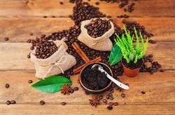 不僅除臭!咖啡渣10妙用 還能洗碗、去角質