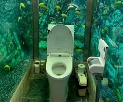 廁所太衝擊客增4倍 老闆卻好困擾