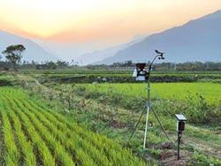 池上微氣象站 為稻農撰新曆