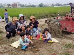 新市農會食農體驗 上百位親子挖地瓜