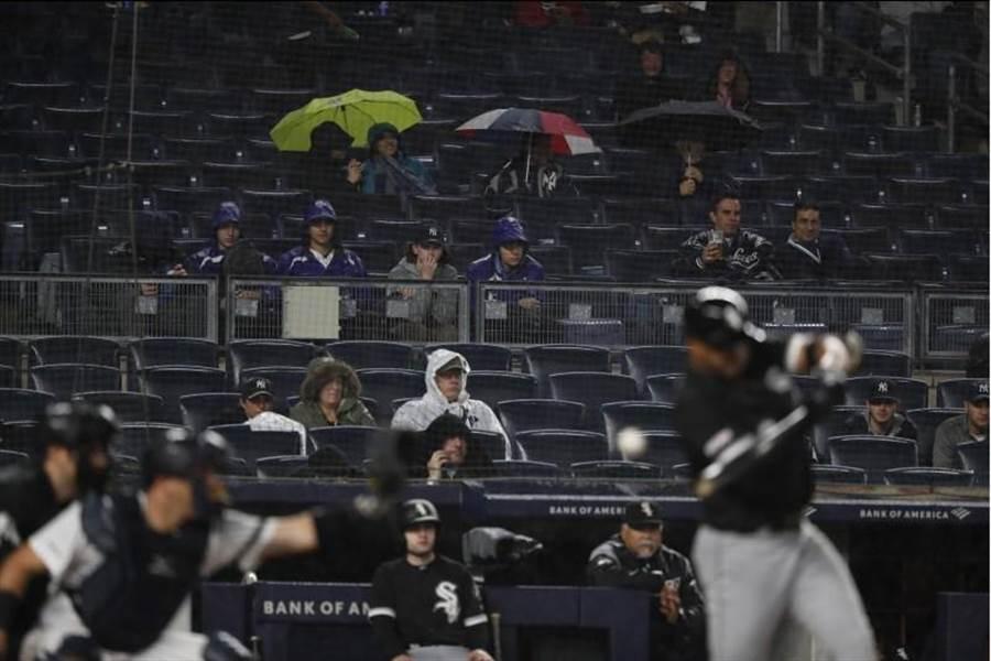 洋基主場球迷在雨中觀戰。(美聯社)