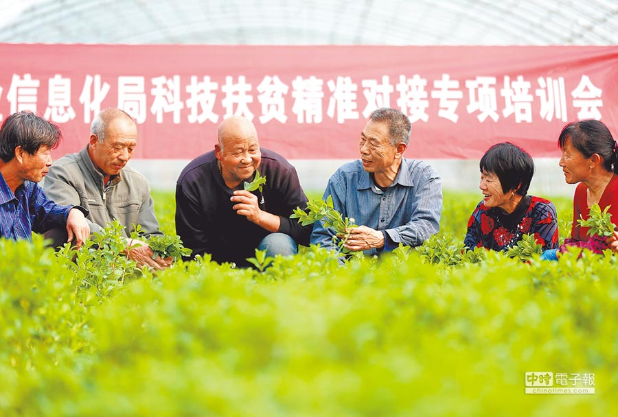 農技人員(右三)為河北省固安縣貧困戶提供專項技術培訓。(新華社)
