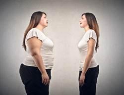 驚!腹部脂肪過多 大腦恐萎縮