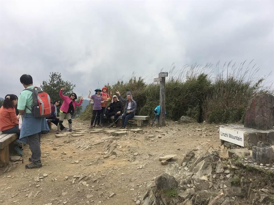 山友造訪麟趾山,賞花、覽景,還有機會觀察到野生動物。(沈揮勝攝)