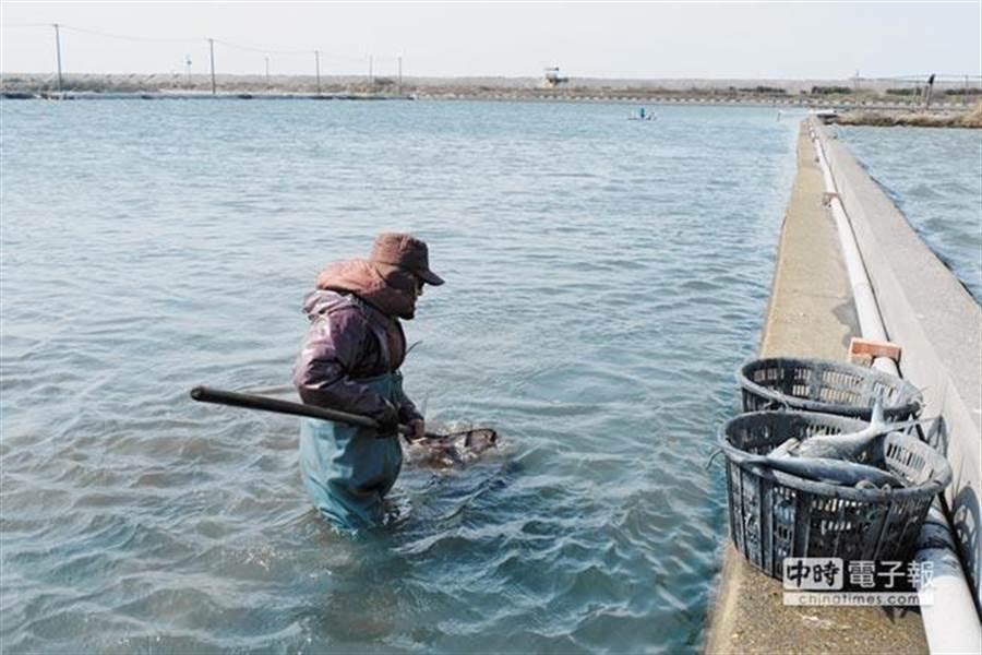 圖為漁民,非當事人。(中時資料照)