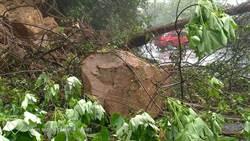 五峰南清公路37k坍方 緊急雙向封閉