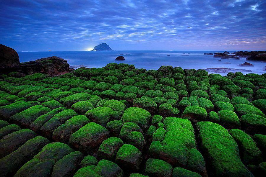 和平島-綠意盎然。(北觀處提供)