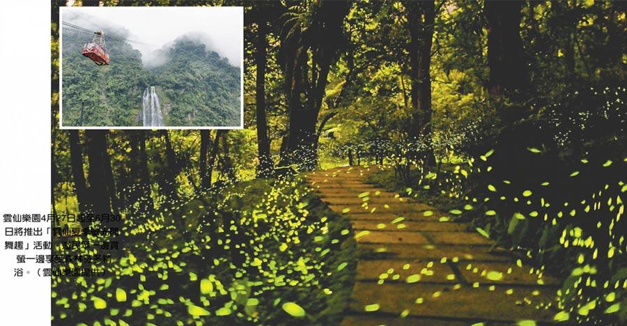 雲仙樂園4月27日起至6月30日將推出「雲仙夏季螢光閃舞趣」活動,邀民眾一邊賞 螢一邊享受森林芬多精浴。(雲仙樂園提供)