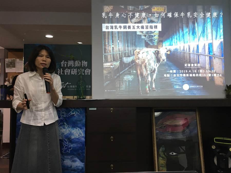 台灣動物社會研究會估計國內半數以上乳牛場均缺乏適當的動物福利條件。(游昇俯攝)