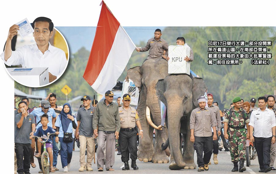 印尼17日舉行大選。部分投開票所在偏遠山區,在南部亞齊省,載運投票箱的大象由大批軍警護駕,前往投票所。(法新社)