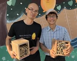 搶救蜂類 蝙蝠館教製「獨居蜂」巢