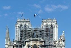 馬克宏政府提現代化設計遭批 聖母院重建 朝野互槓