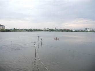 爭取埤塘養殖合法化 漁民組協會當溝通窗口