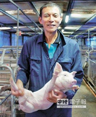 綠能養豬 一滴水都不浪費