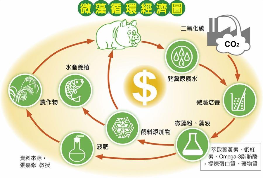 微藻循環經濟圖