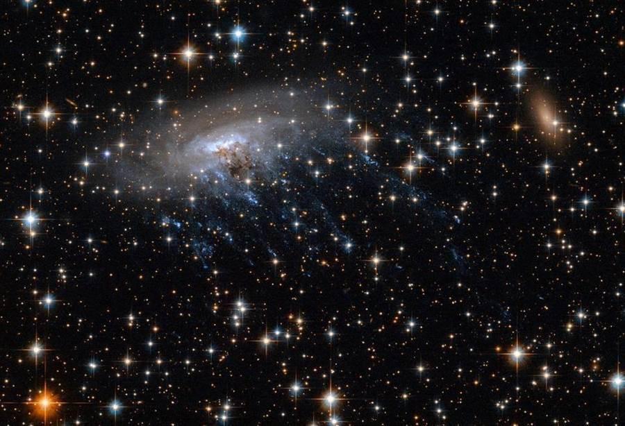 哈伯望遠鏡的可見光觀測ESO 137-001星系,是看不到雲氣的。(圖/NASA)