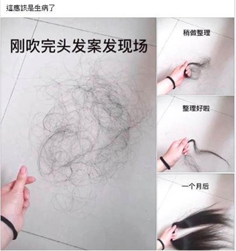 男網友分享了一系列的掉髮圖,蒐集一個月之後的成果驚人。(圖/翻攝自爆笑公社)