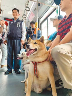 配合狗小孩路跑 新北推寵物公車