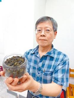四季春含茶飢素 有助進軍國際