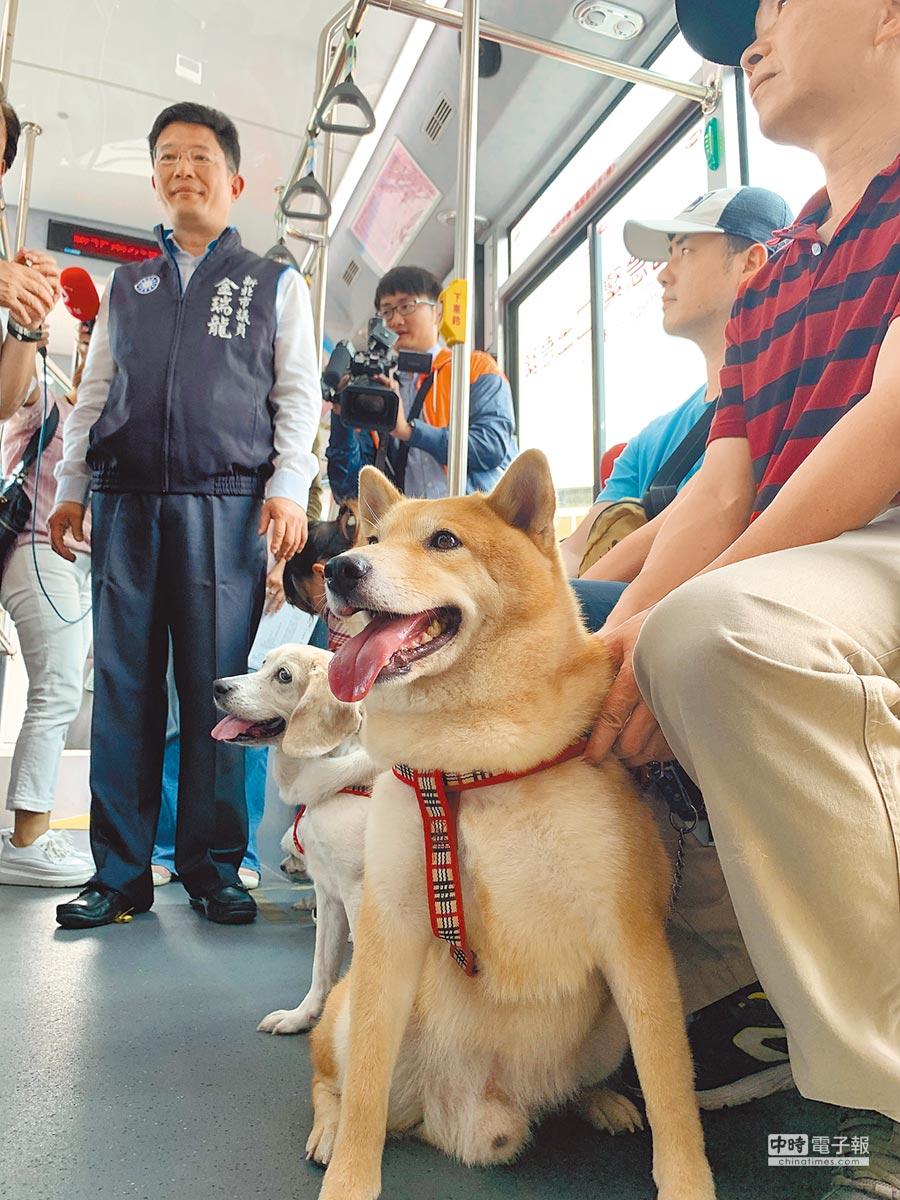 為了配合周末的「奔跑吧!狗小孩公益路跑」活動,交通局專設2路線部分班次作為寵物公車。(王揚傑攝)