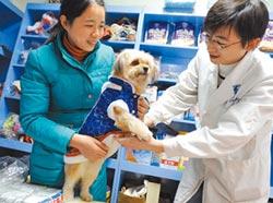亞洲私募巨頭 搶寵物醫療商機