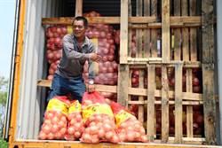 一例一休「後遺症」嚴重 恆春農民也要假日收寄服務點