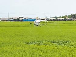 無人機勘災損 智慧農業起跑