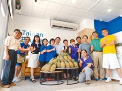 團購鳳梨 教師團體啟動助農