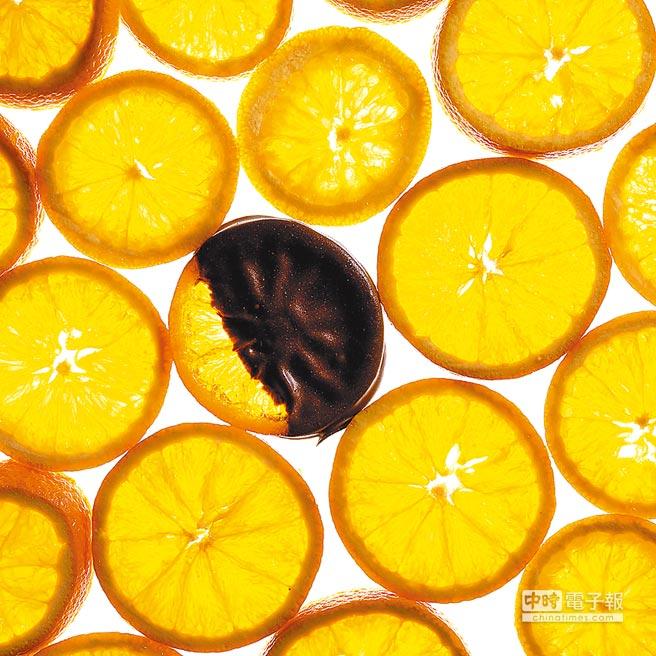 比漾廣場微型店「Chocolat R」現有近20種口味,單顆90元起,秒殺口味「橙片」120元,必嘗口味還有玫瑰之心、干邑蘭姆VSOP等。(Chocolat R提供)飲酒過量有礙健康