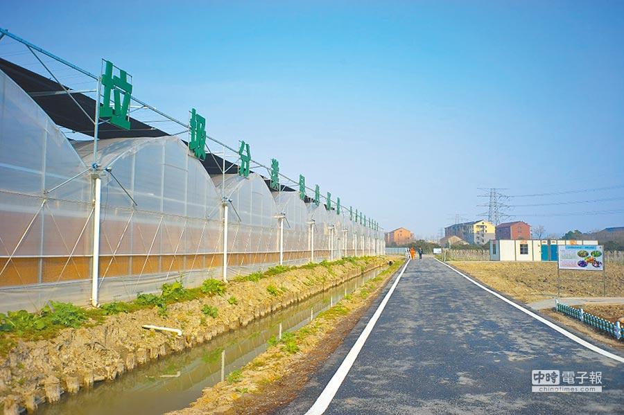 在杭州市餘杭區崇賢街道,有一座神奇的「昆蟲農場」。(取自杭州穀勝科技公司官網)
