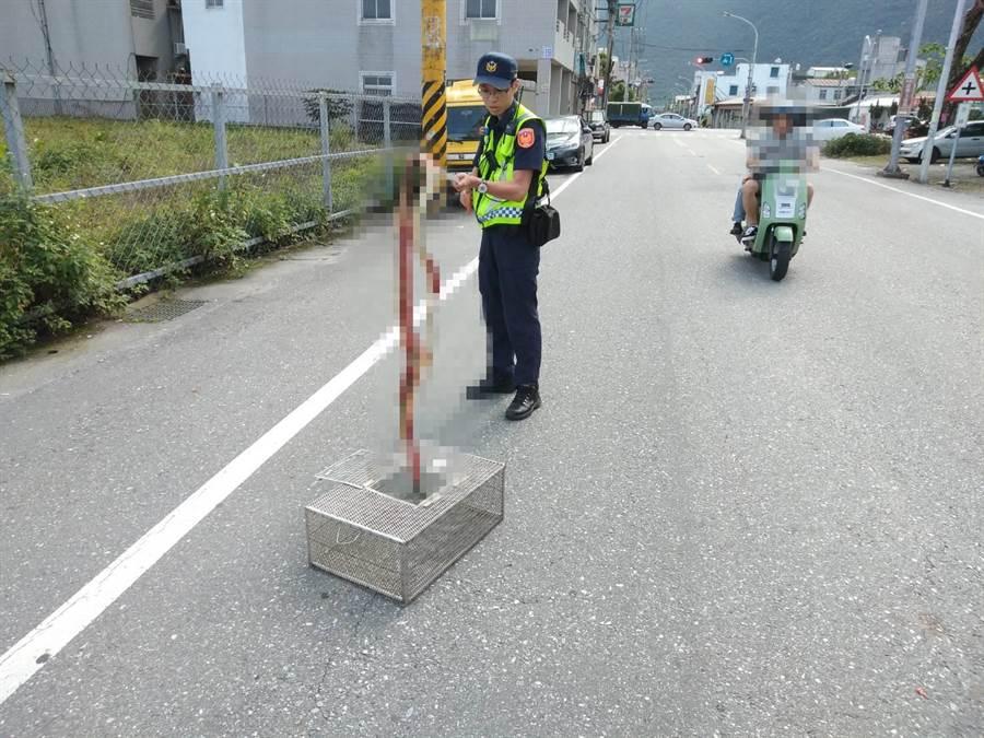 警方將倒楣的長蛇夾起,呼籲行人應走斑馬線。(許家寧翻攝)